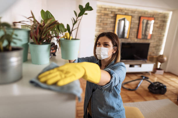 woman-wiping-dust-from-shelf-and-other-furniture-in-living-room-picture-id1220442502